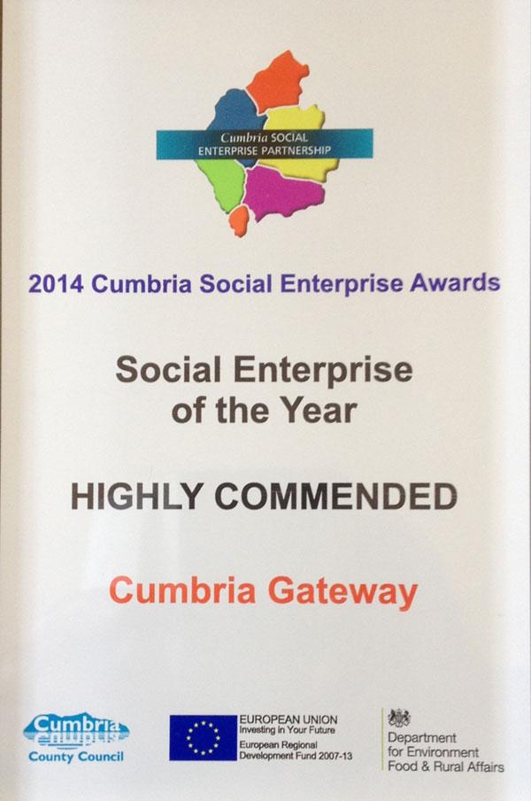 social-enterprise-award-graphic